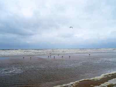 Scheveningen 2015 Nach einem Unwetter
